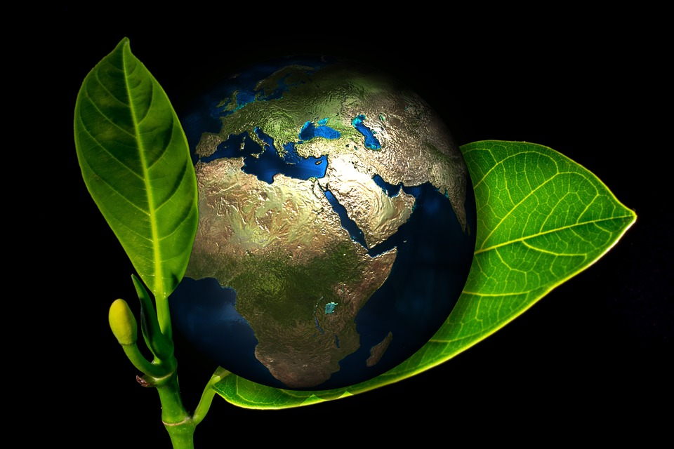 Social License and Sustainability